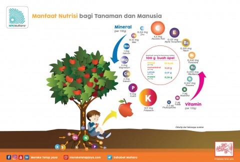 Manfaat Nutrisi Bagi Tanaman dan Manusia