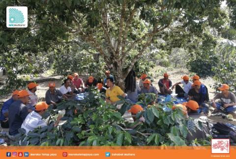 Forum Petani Sipirok Butuh Pendampingan Kelola Pertanian