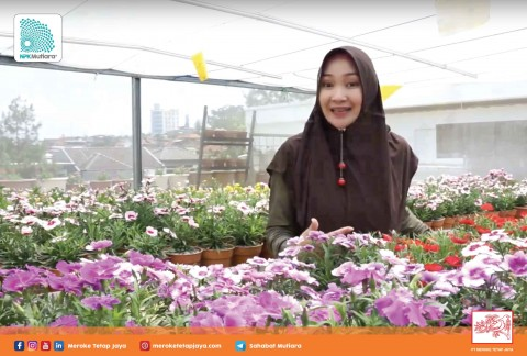 Eva L A Madarona (Owner Ijo Hydro) - Kartini Indonesia