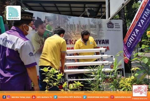 Penyerahan Instalasi Hidroponik ke Panti Asuhan Griya Yatim dan Dhuafa, Serpong